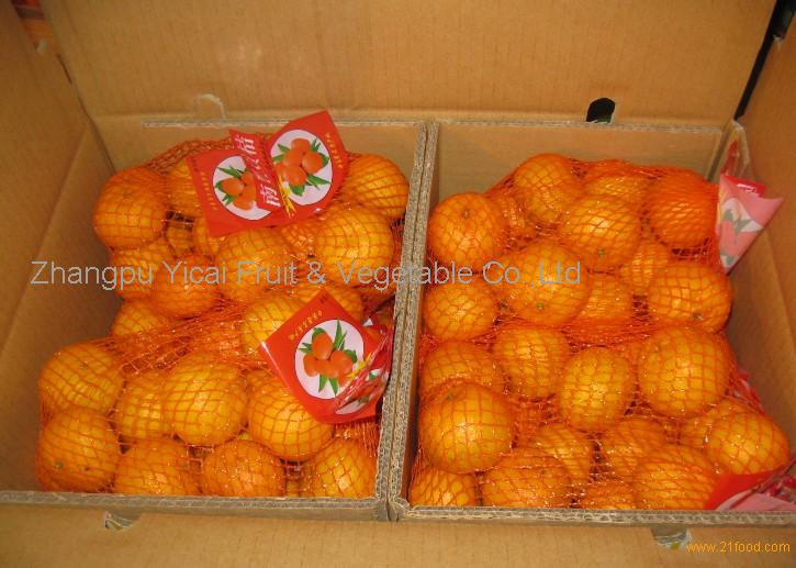 Nanfeng orange37