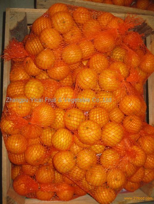 Nanfeng orange38