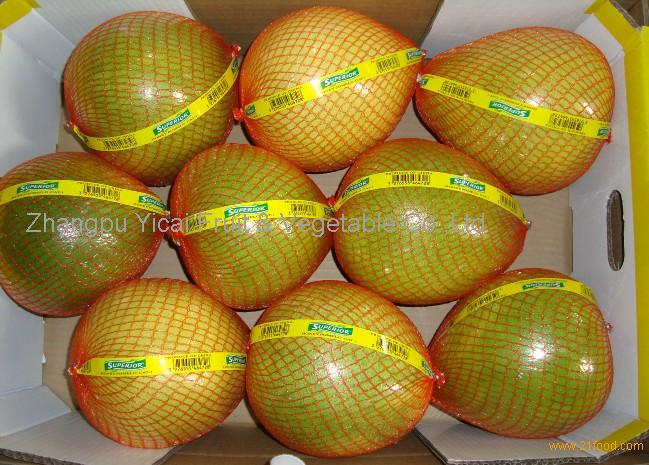 Honey pomelo40