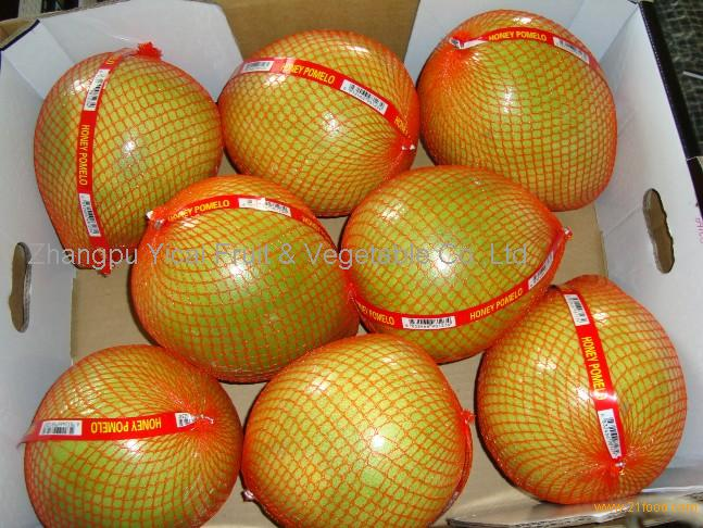 Honey pomelo26
