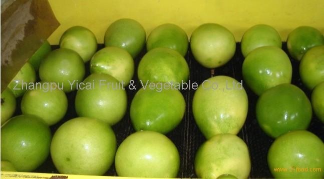 Chinese fresh pomelo006