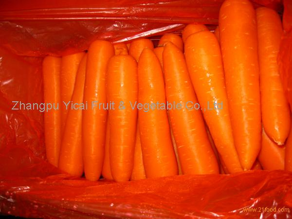 Chinese Fresh carrot002