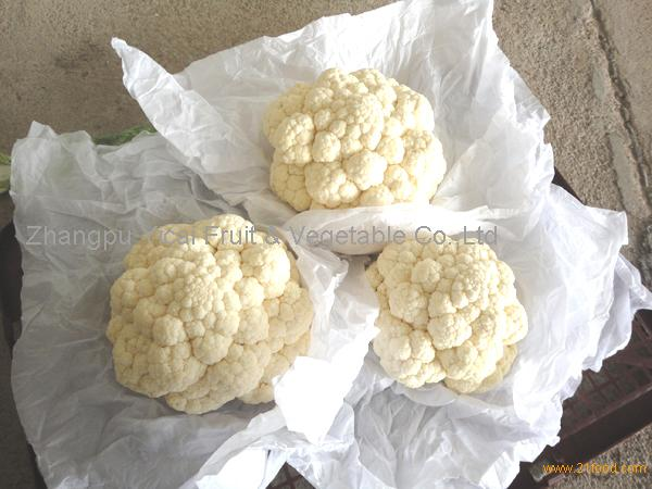 Fresh cauliflower001