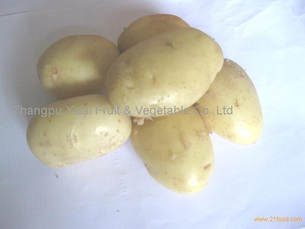 Good quality potato
