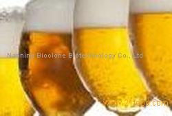 alpha-Acetolactate Decarboxylase(ALDC) for brewing industry