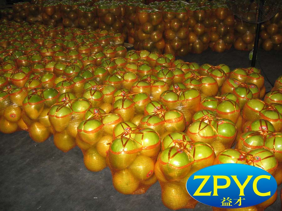 Chinese guanxi honey pomelo