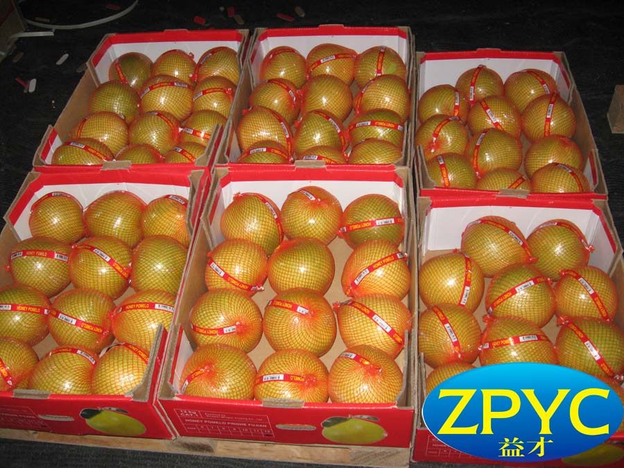 Chinese fresh pomelo002
