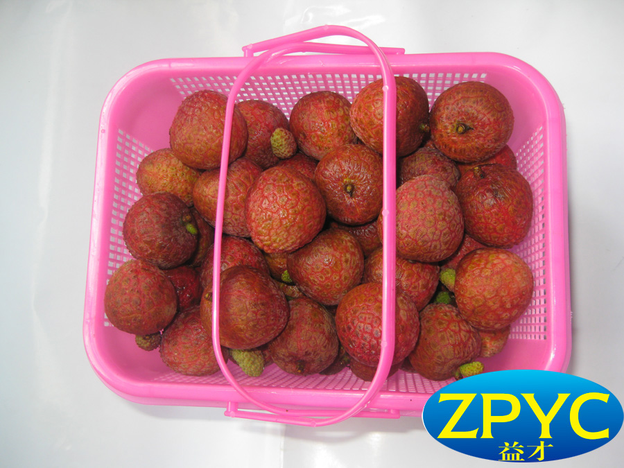 Fresh and Sweet Lychees(Lichi)