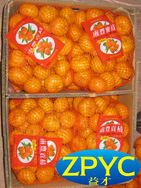 Fresh nanfeng mandarin