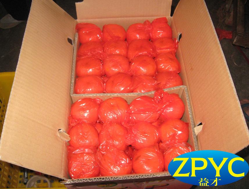 Chinese lugan mandarin orange
