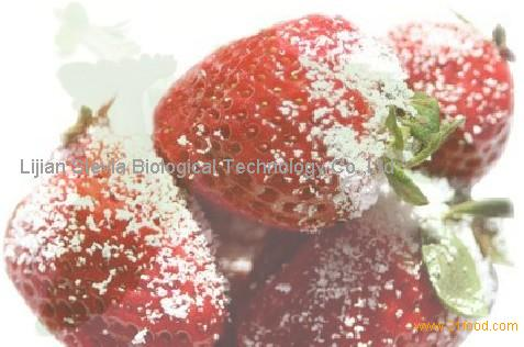 Stevia sguar--baking icing sugar