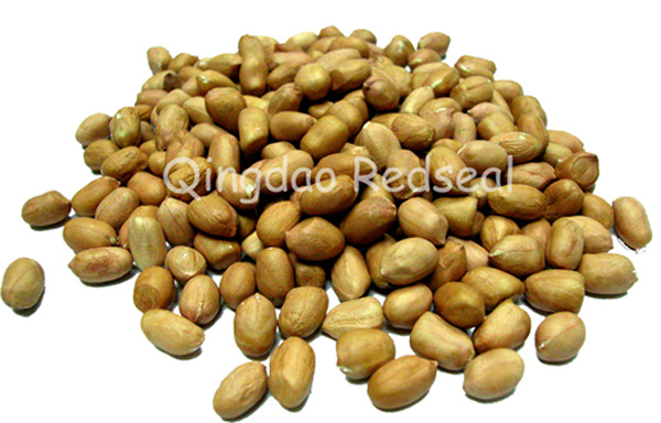 Peanut/Groundnut Kernels(Long,round, red-skin type)