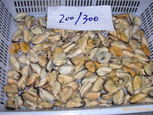 frozen mussels meat