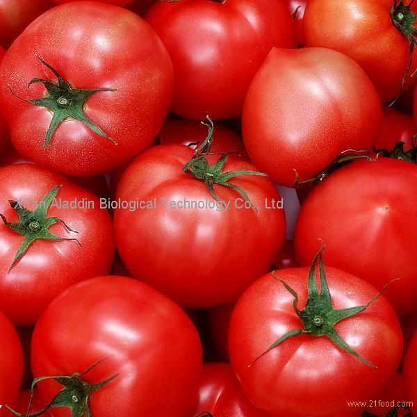 Tomato Extract Lycopene/Tomato P.E Licopin 5%10%