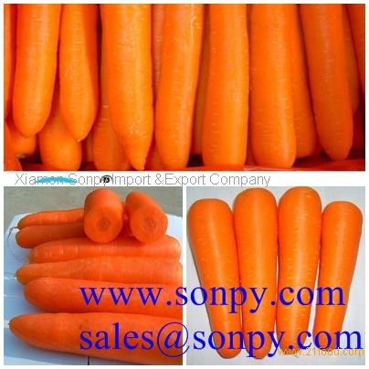 carrot is a fruit or vegetable mandarin fruit