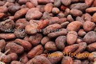 Best Quality Roasted Cocoa Beans for Sale
