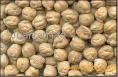 Kabuli Chickpeas for sale products,Malaysia Kabuli Chickpeas for sale supplier240 x 158 jpeg 10kB