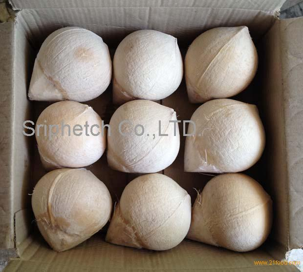Fresh Young Coconut (Ball Shape) from Thailand Ratchaburi