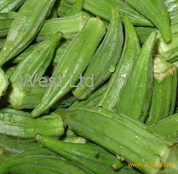 Okro Products Cameroon Okro Supplier