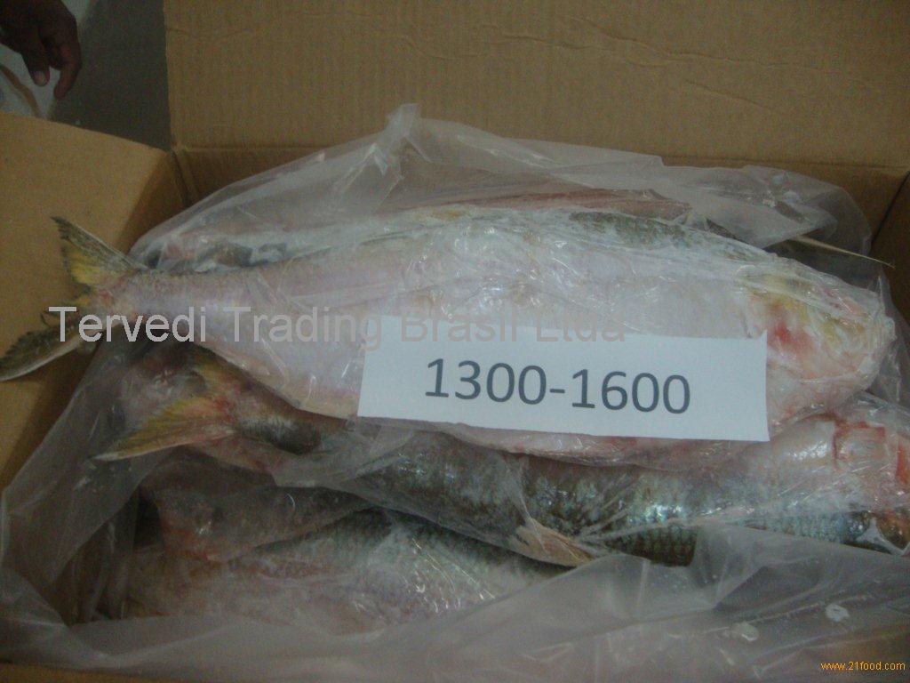 TERVEDI TRADING BRASIL LTDA ,Brazil - supplierss.com