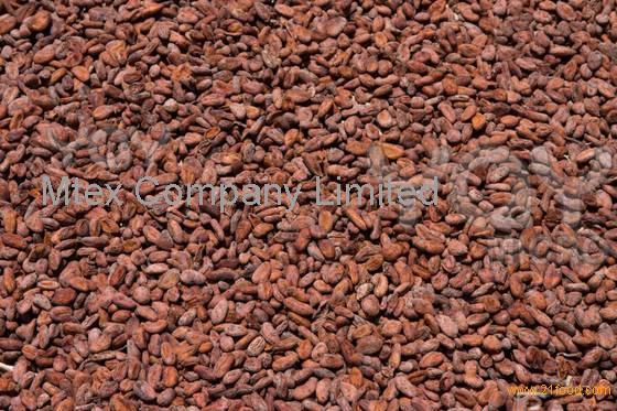 how to make cocoa powder from cocoa beans at home