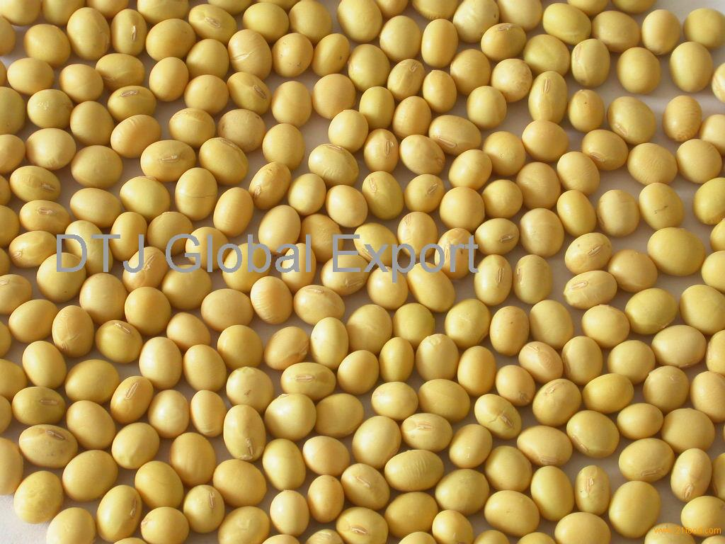 gmo soybeans The envirologix quickcomb provides the most comprehensive gmo screening because at least one protein expressed in any commercialized gmo corn will be detected how to identify gmo soybeans.