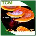 Red Reishi Mushroom Extract 30%