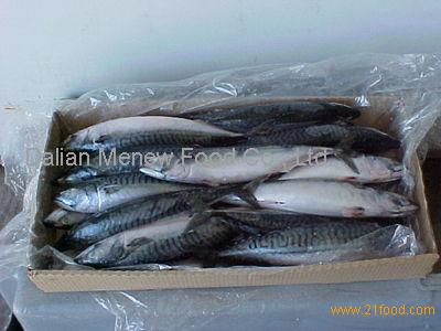 Good quality caplin made in china