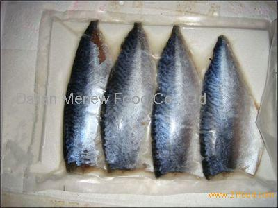 high quality mackerel with frozen food