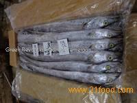 fresh clean frozen Ribbon fish