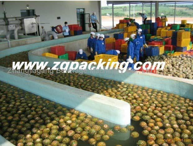 Automatic Tropic Fruit Pineapple Juice Processing Line