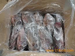 frozen Tilapia whole round/fillets