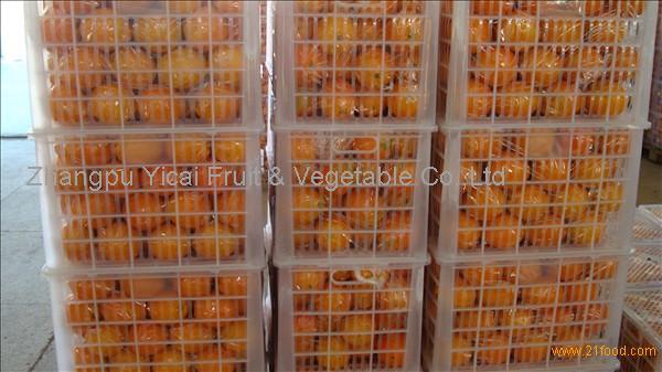 Sweet navel orange for hot sale