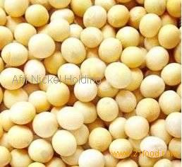 Edible Soybeans