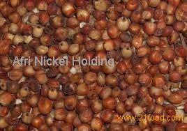 red sorghum seeds