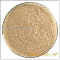 food grade lipase enzyme