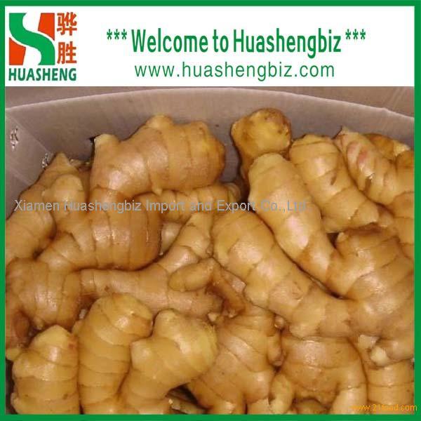 Best fresh ginger