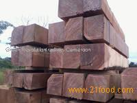 Ayous timber logs