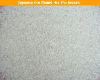 Round Rice,Japonica Rice 5% Broken