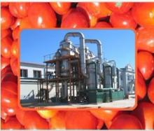 tomato paste production line