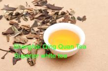aged white tea more healthy