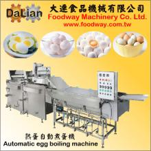 Automatic Egg Boiling Machine