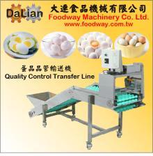 Egg Quality Contrel Line