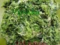 Ulva Lactuca(Sea lettuce)