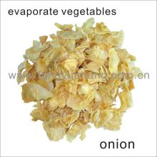dried onion