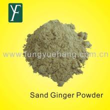 sand ginger