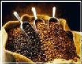COFFEE ROBUSTA GRADE