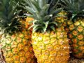 Fresh pineapple....