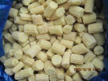 IQF Frozen baby corn