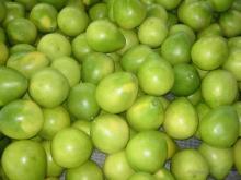 Supply pomelo,honey pomelo, grapefruit,citrus fruit